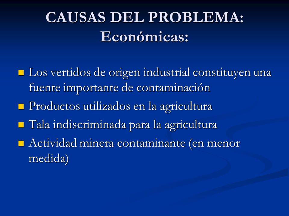 CAUSAS DEL PROBLEMA: Económicas: