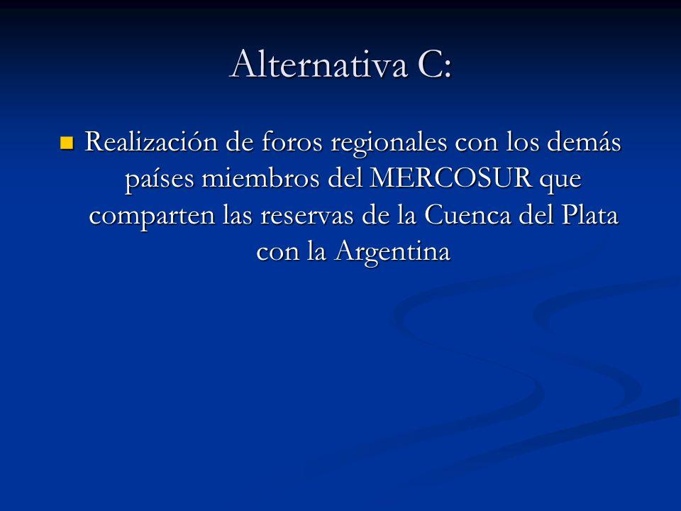 Alternativa C: