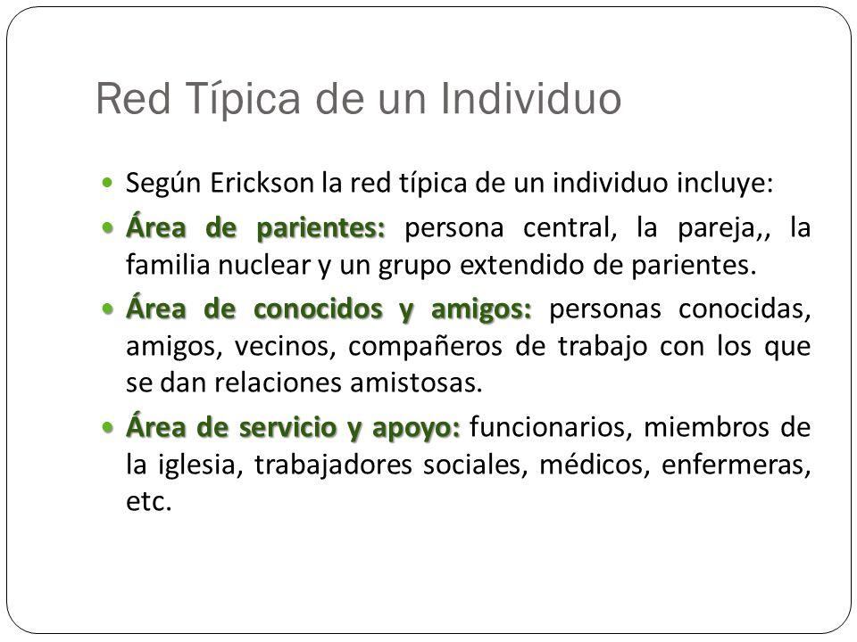 Red Típica de un Individuo