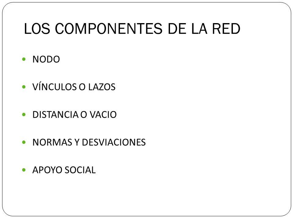 LOS COMPONENTES DE LA RED