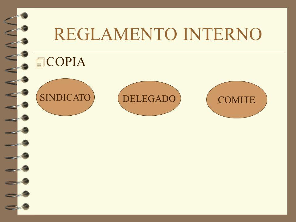 REGLAMENTO INTERNO COPIA SINDICATO DELEGADO COMITE