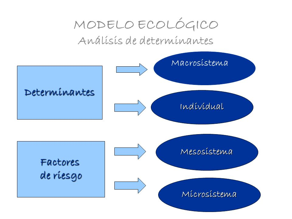 MODELO ECOLÓGICO Análisis de determinantes