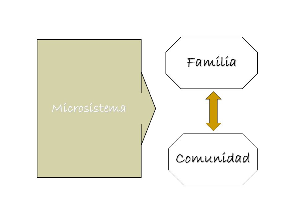 Familia Microsistema Comunidad