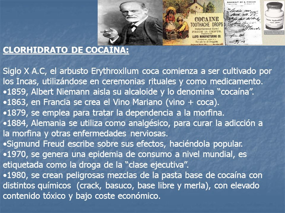 CLORHIDRATO DE COCAÍNA: