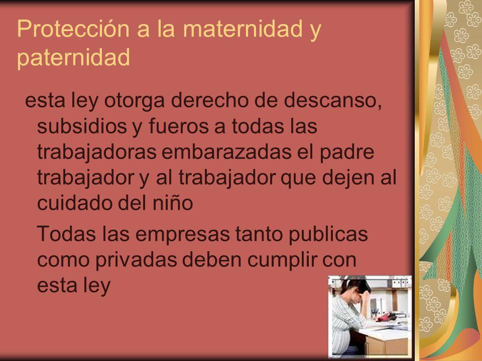 Protección a la maternidad y paternidad