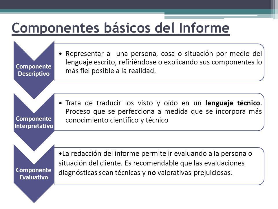 Componentes básicos del Informe