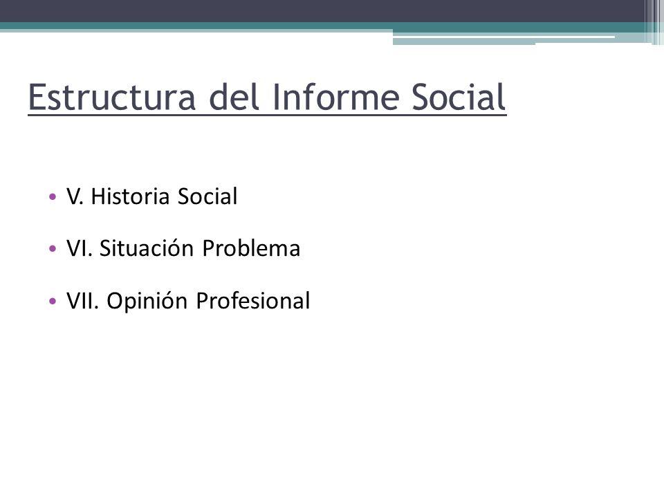 Estructura del Informe Social