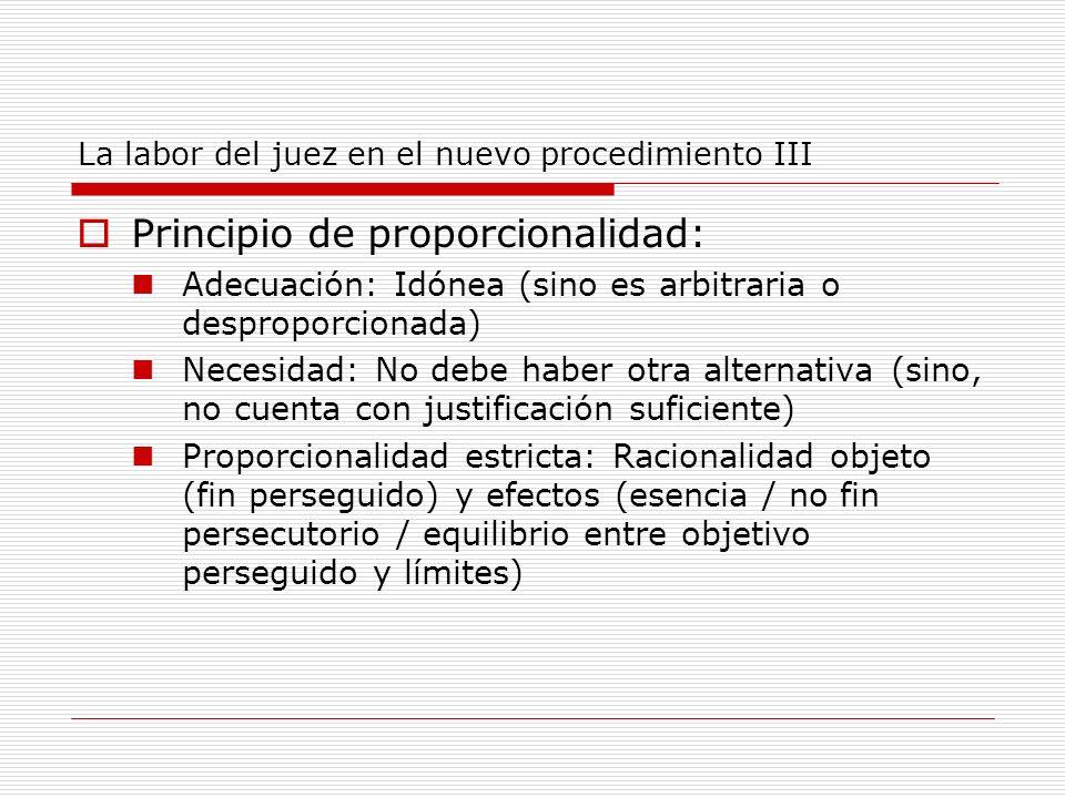 La labor del juez en el nuevo procedimiento III