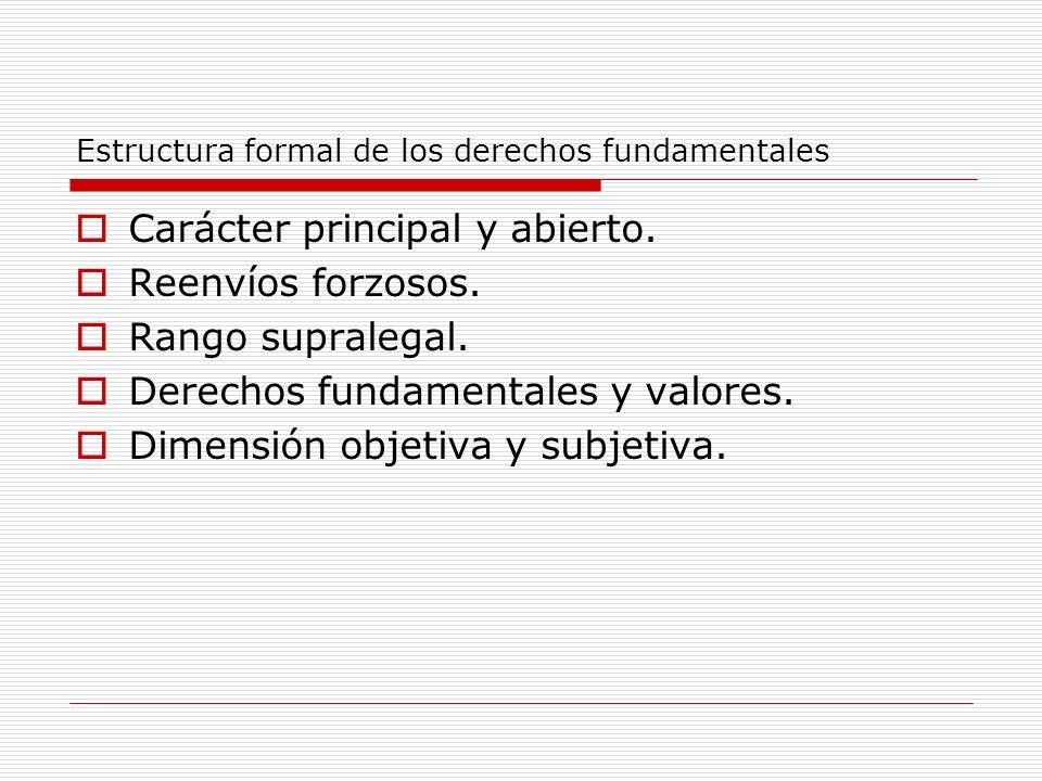 Estructura formal de los derechos fundamentales