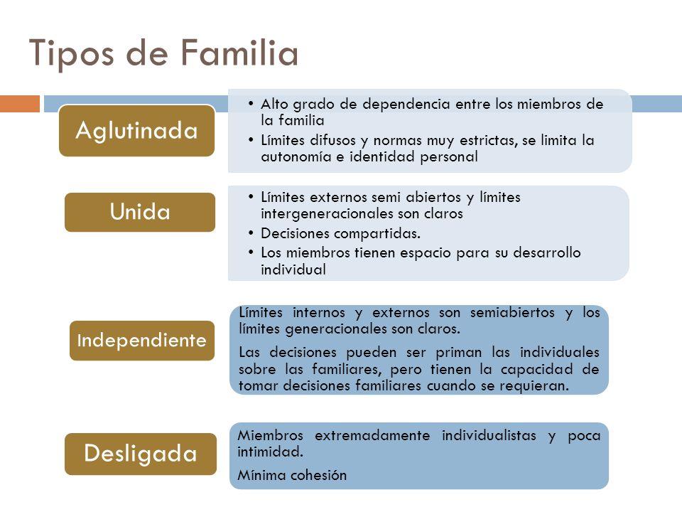 Tipos de Familia Unida Independiente