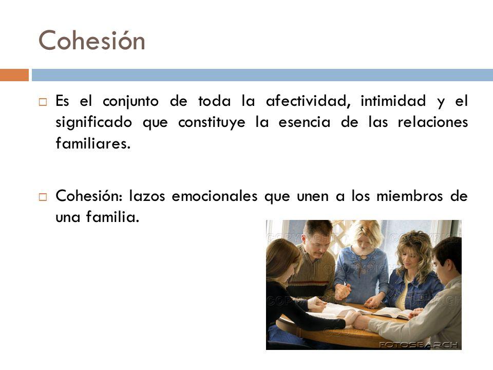 Cohesión Es el conjunto de toda la afectividad, intimidad y el significado que constituye la esencia de las relaciones familiares.