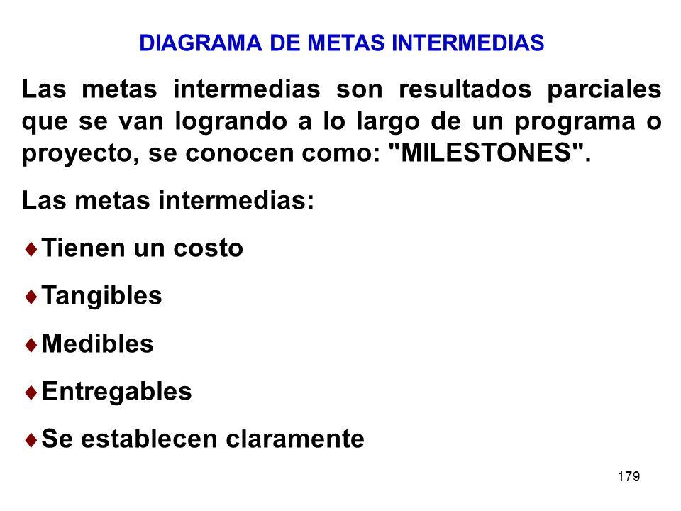 DIAGRAMA DE METAS INTERMEDIAS