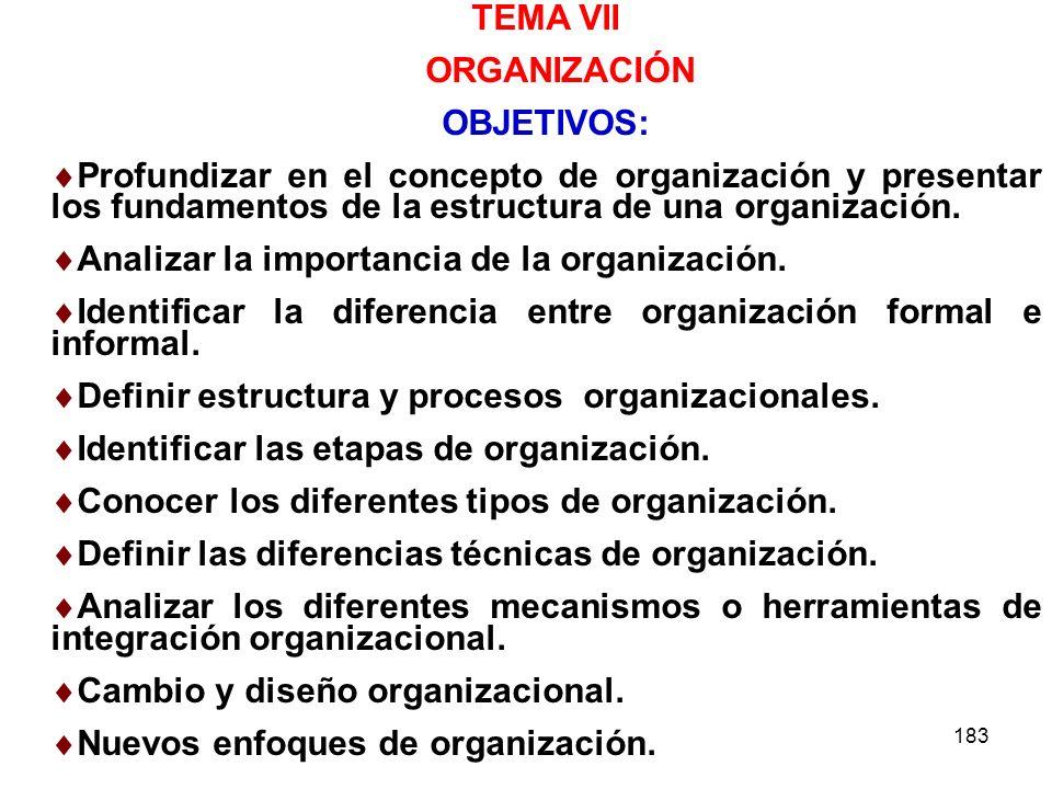 TEMA VII ORGANIZACIÓN. OBJETIVOS: Profundizar en el concepto de organización y presentar los fundamentos de la estructura de una organización.