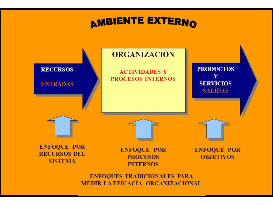 AMBIENTE EXTERNO ORGANIZACIÓN PRODUCTOS Y SERVICIOS SALIDAS RECURSOS