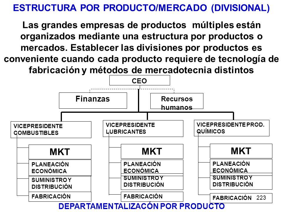 ESTRUCTURA POR PRODUCTO/MERCADO (DIVISIONAL)