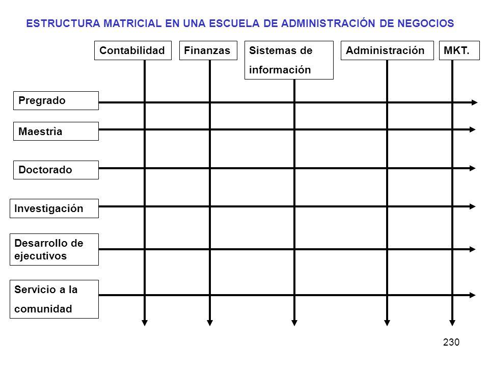 ESTRUCTURA MATRICIAL EN UNA ESCUELA DE ADMINISTRACIÓN DE NEGOCIOS