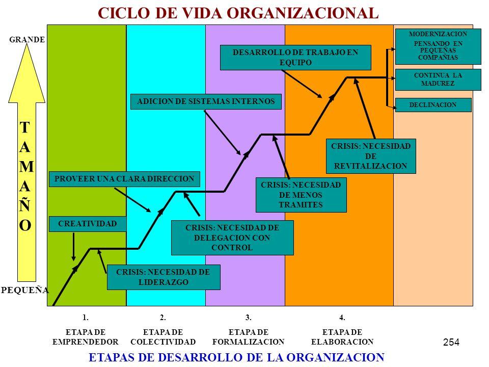 CICLO DE VIDA ORGANIZACIONAL TAMAÑO