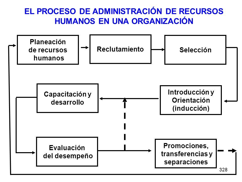 EL PROCESO DE ADMINISTRACIÓN DE RECURSOS HUMANOS EN UNA ORGANIZACIÓN