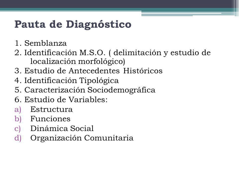 Pauta de Diagnóstico 1. Semblanza