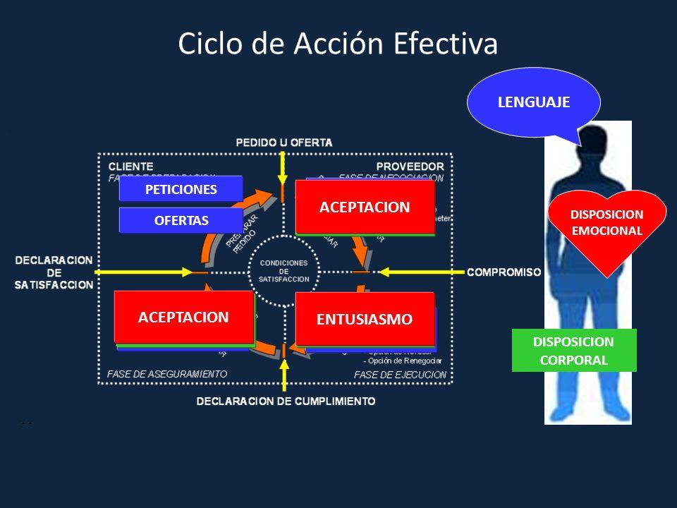Ciclo de Acción Efectiva