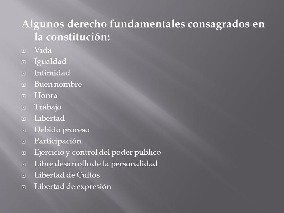 Algunos derecho fundamentales consagrados en la constitución:
