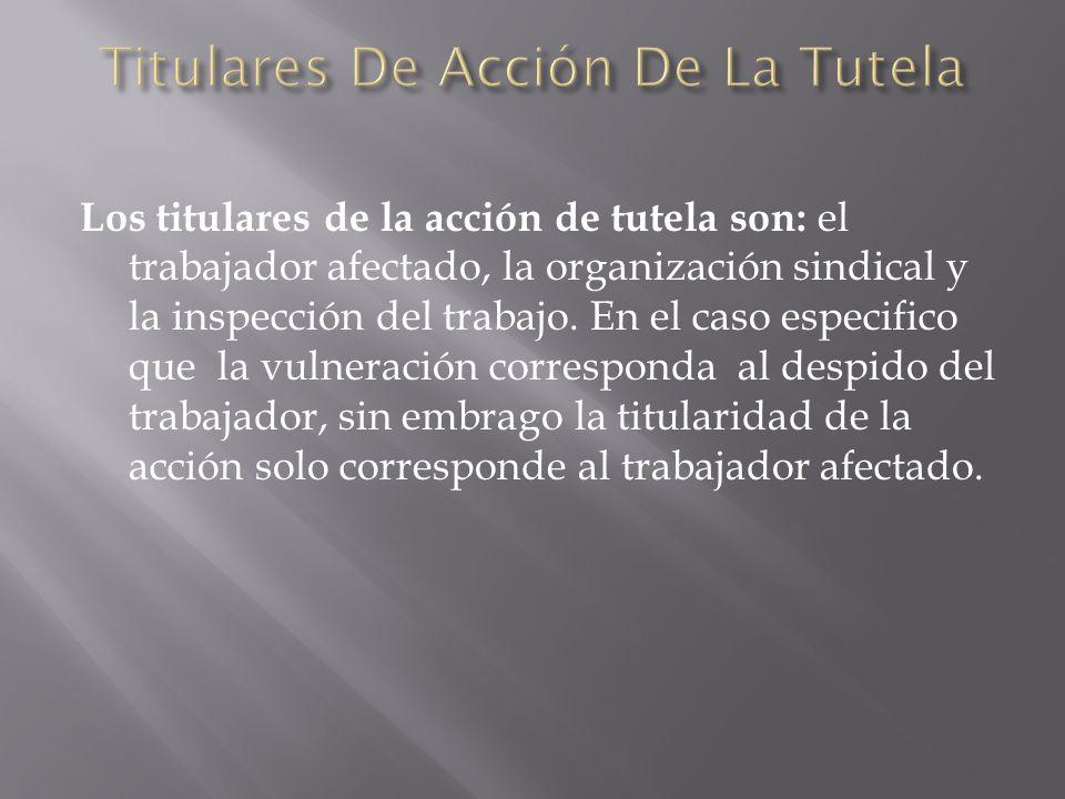 Titulares De Acción De La Tutela