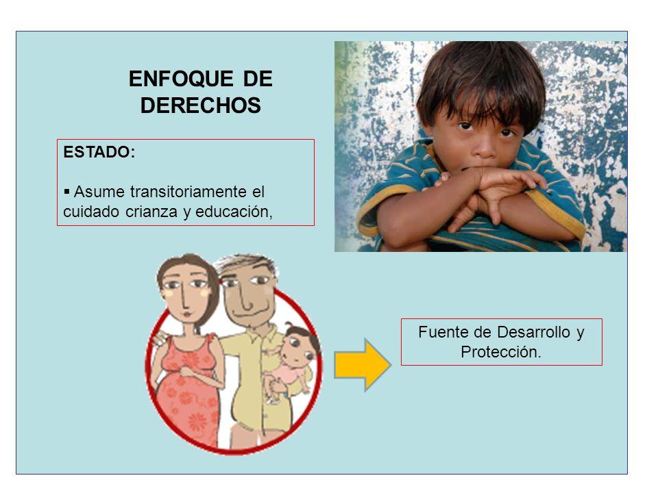 Fuente de Desarrollo y Protección.