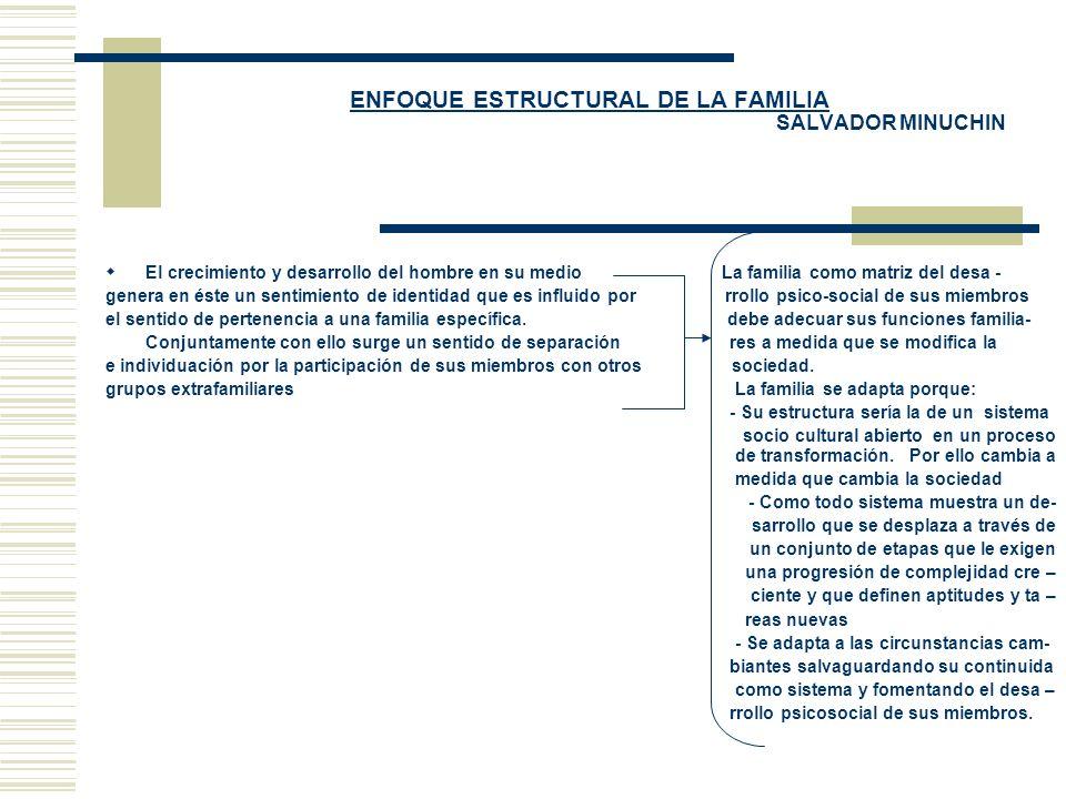ENFOQUE ESTRUCTURAL DE LA FAMILIA SALVADOR MINUCHIN