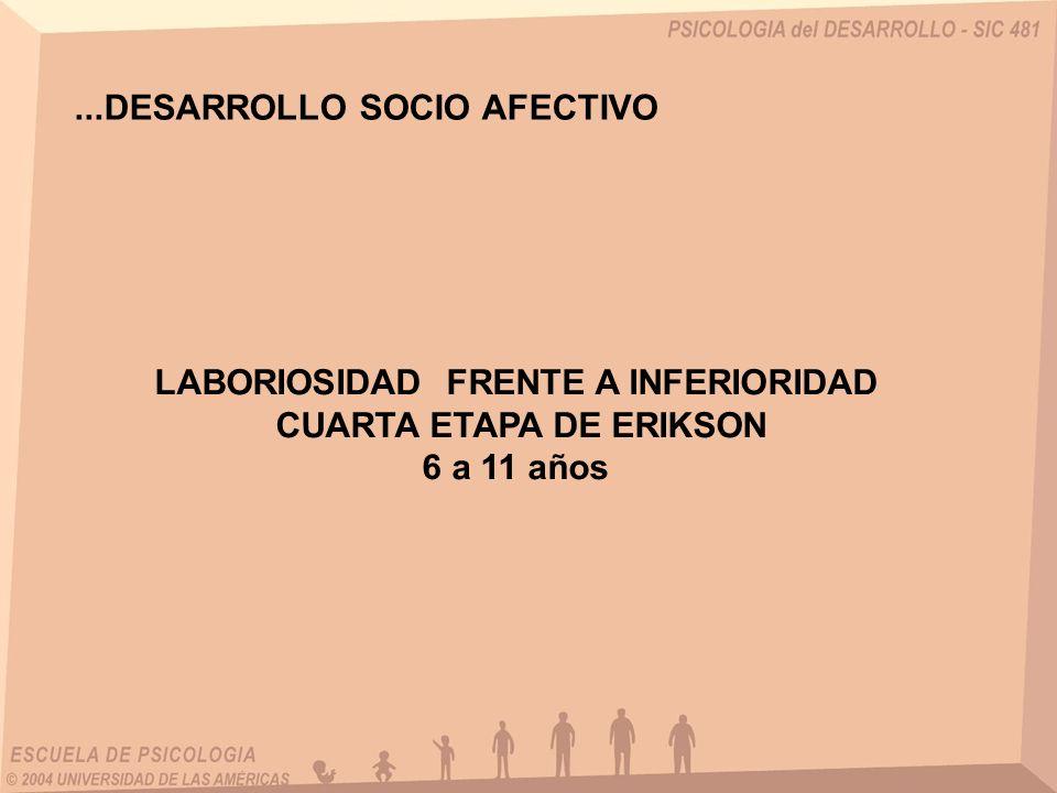 ...DESARROLLO SOCIO AFECTIVO