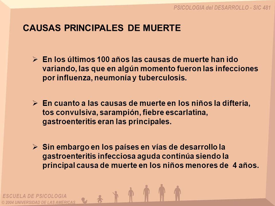 CAUSAS PRINCIPALES DE MUERTE