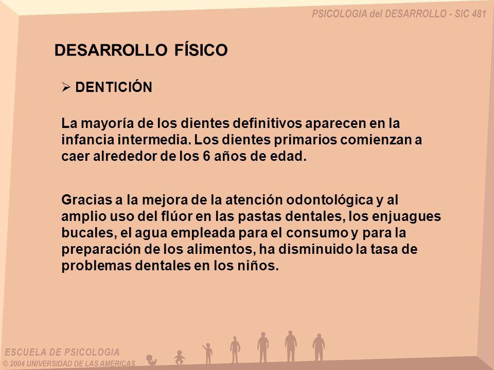 DESARROLLO FÍSICO DENTICIÓN