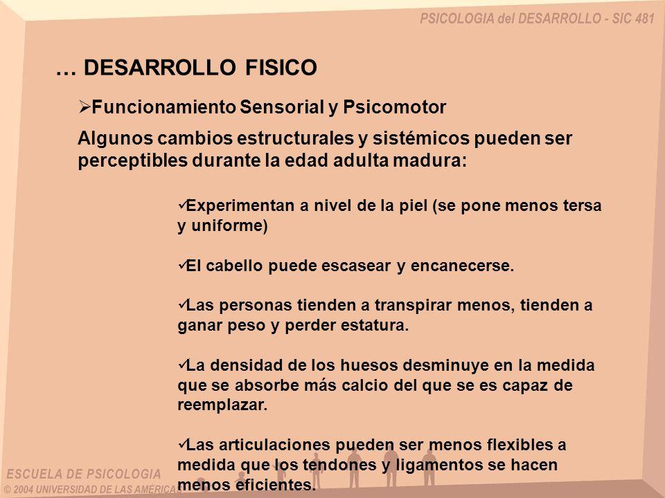 … DESARROLLO FISICO Funcionamiento Sensorial y Psicomotor