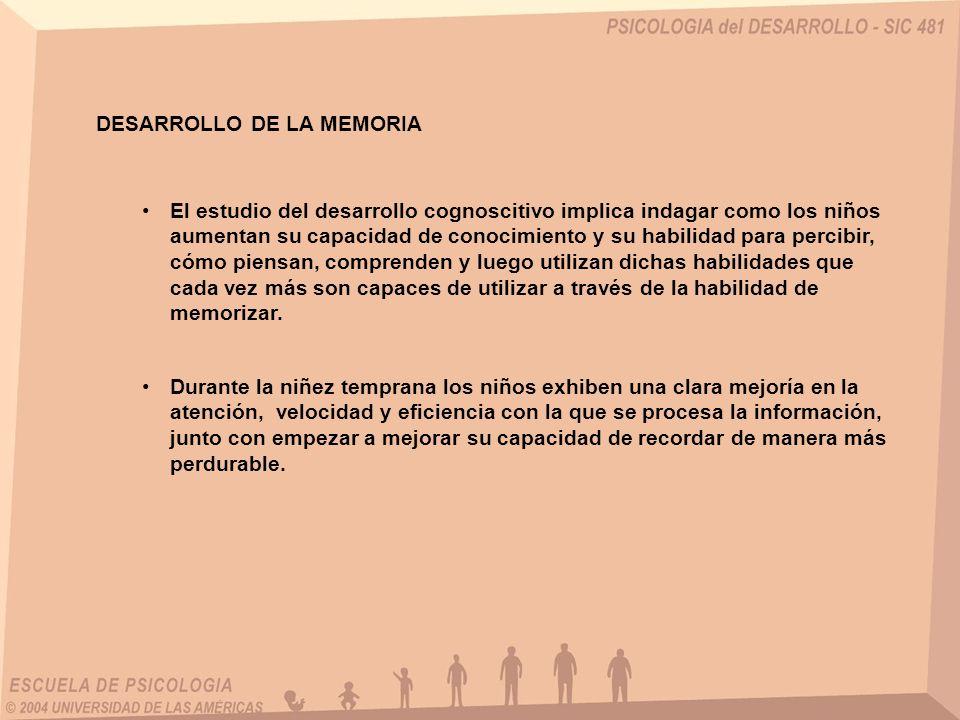 DESARROLLO DE LA MEMORIA