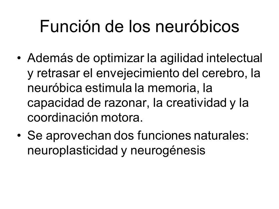 Función de los neuróbicos