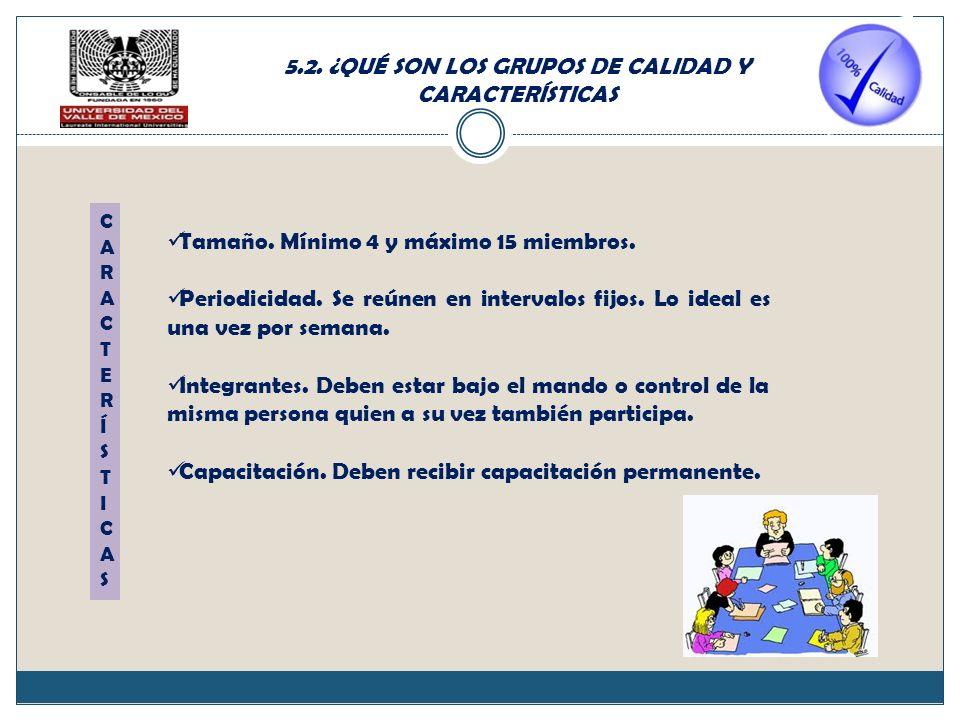 5.2. ¿QUÉ SON LOS GRUPOS DE CALIDAD Y CARACTERÍSTICAS