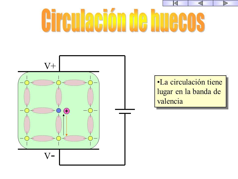 Circulación de huecos V+ V-