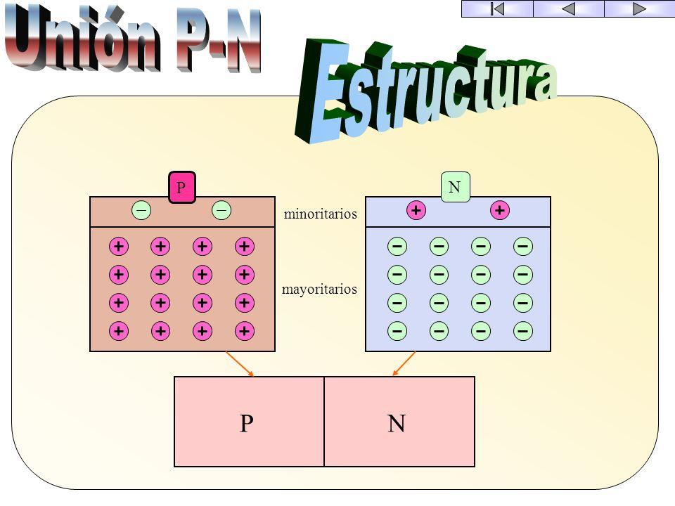 Unión P-N Estructura P N minoritarios mayoritarios P N