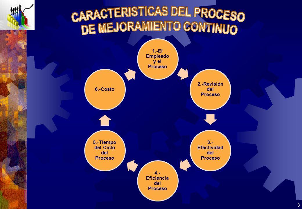 CARACTERISTICAS DEL PROCESO DE MEJORAMIENTO CONTINUO