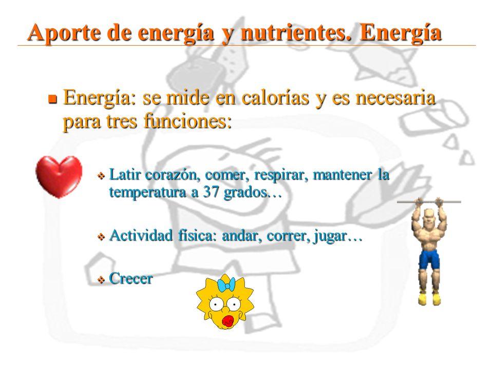 Aporte de energía y nutrientes. Energía