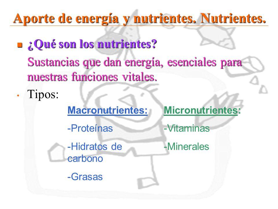 Aporte de energía y nutrientes. Nutrientes.