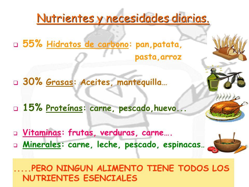 Nutrientes y necesidades diarias.
