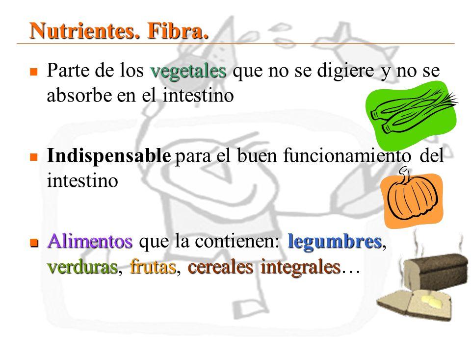 Nutrientes. Fibra.Parte de los vegetales que no se digiere y no se absorbe en el intestino. Indispensable para el buen funcionamiento del intestino.