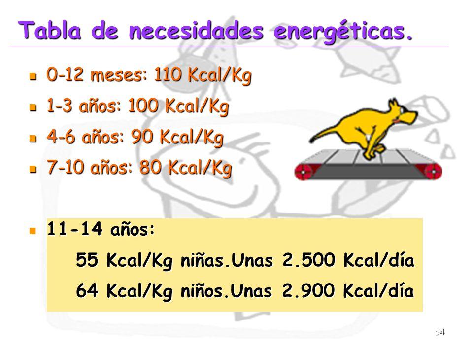 Tabla de necesidades energéticas.