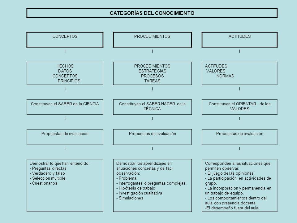 CATEGORÍAS DEL CONOCIMIENTO