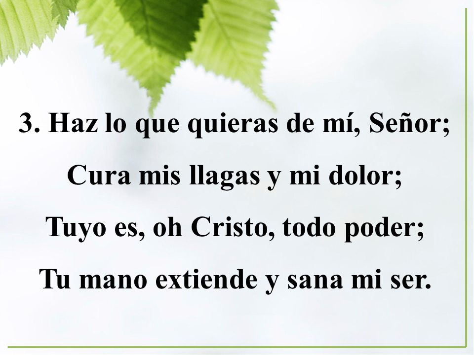 3. Haz lo que quieras de mí, Señor; Cura mis llagas y mi dolor;