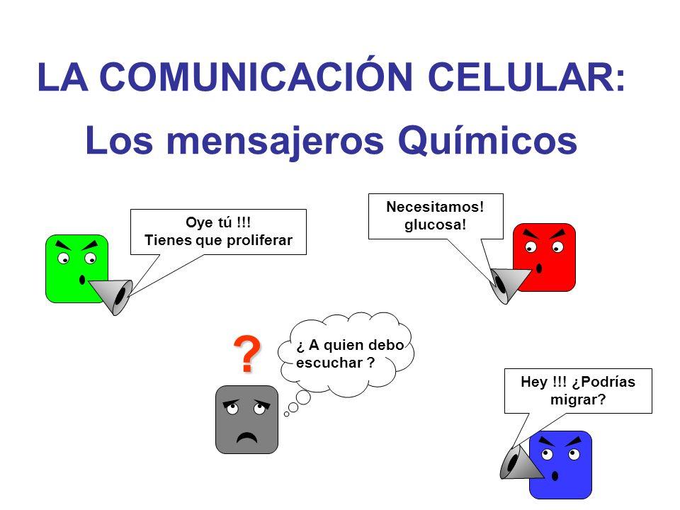 LA COMUNICACIÓN CELULAR: Los mensajeros Químicos