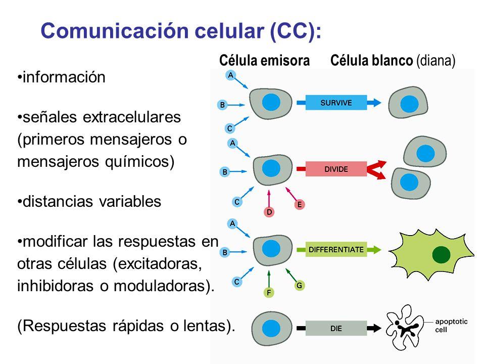 Comunicación celular (CC):