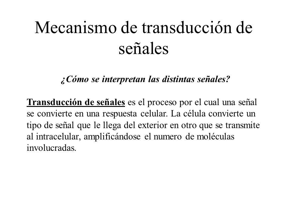 Mecanismo de transducción de señales