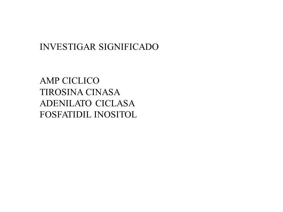 INVESTIGAR SIGNIFICADO