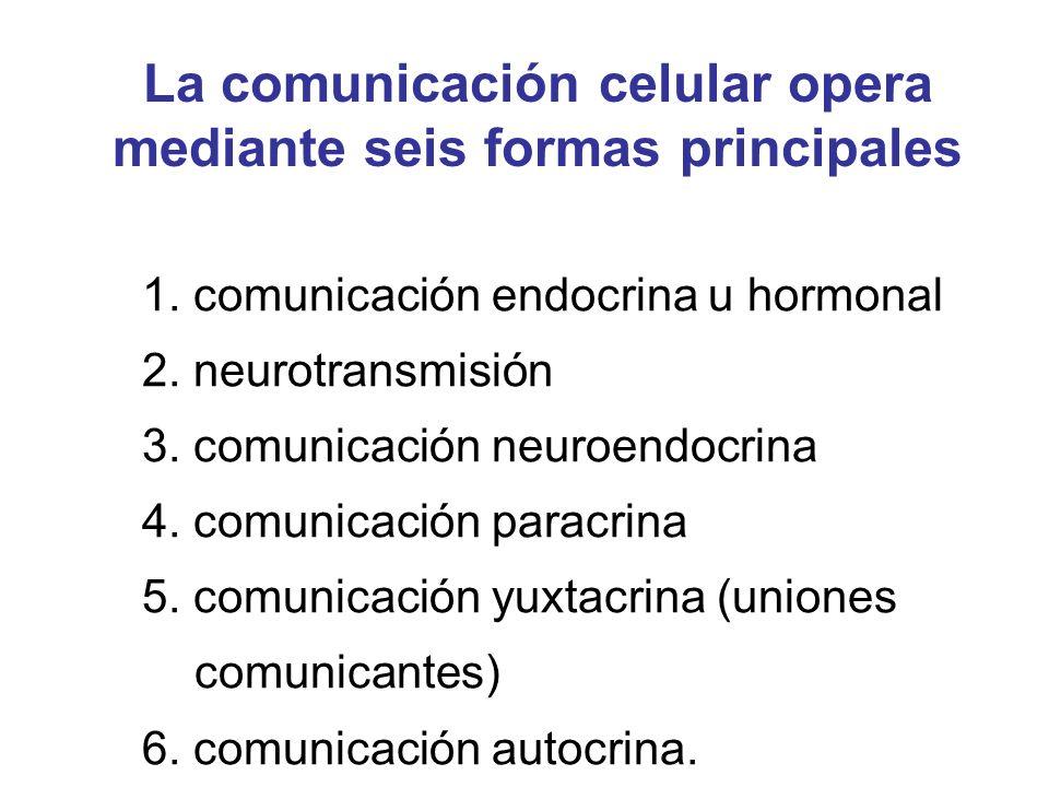 La comunicación celular opera mediante seis formas principales